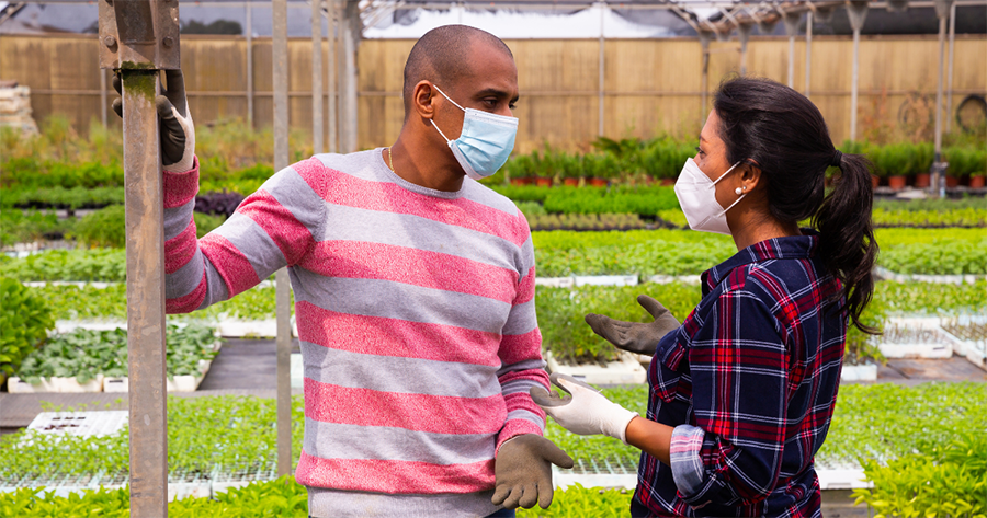 Two people are wearing masks in a garden, theoretically discussing whether asking about vaccination status breaks the law.
